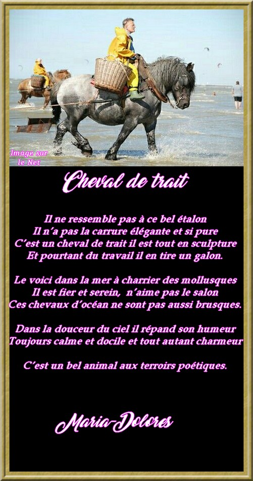 Cheval de trait