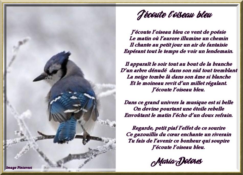 J\\\'écoute l\\\'oiseau bleu