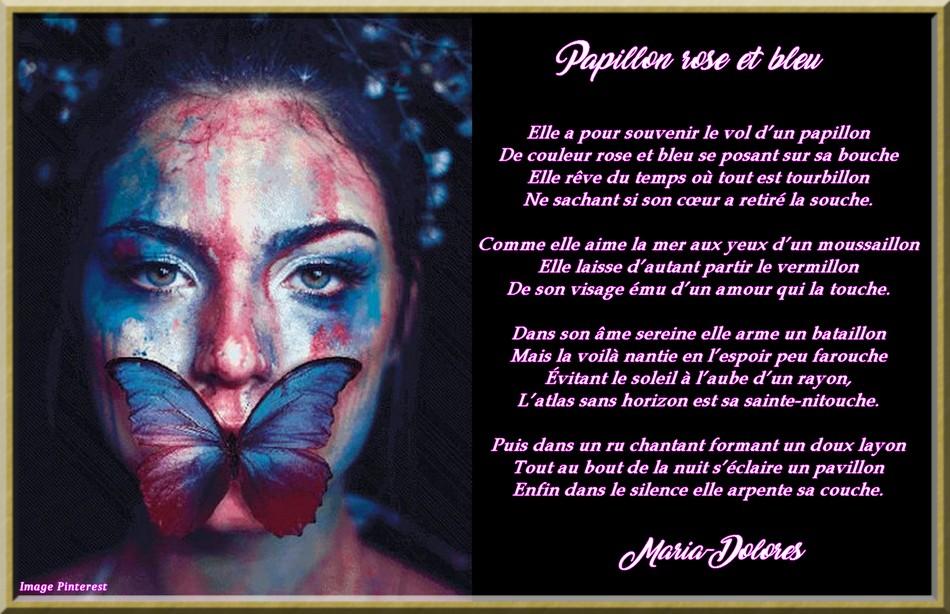 Papillon rose et bleu