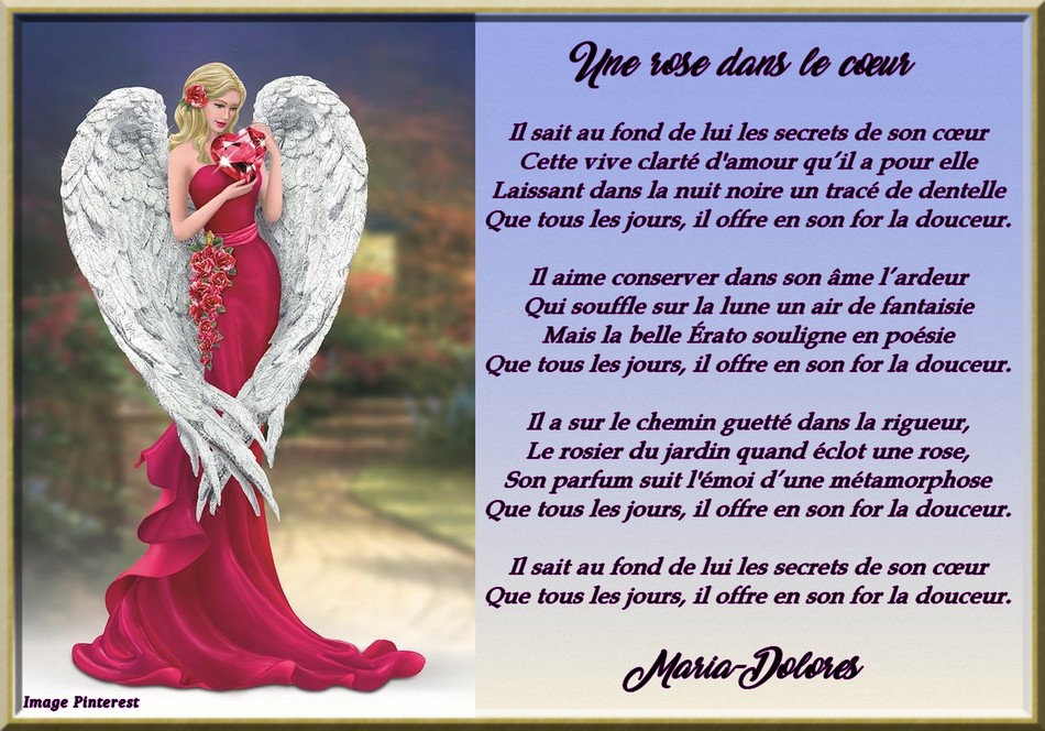 Une rose dans le coeur