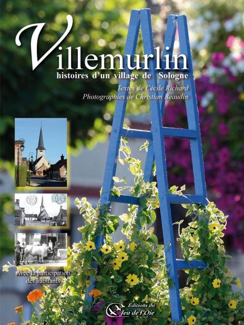 Villemurlin1.jpg