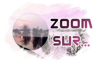 Zoom_deco.jpg