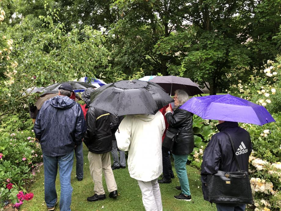 ... sous un coin de parapluie