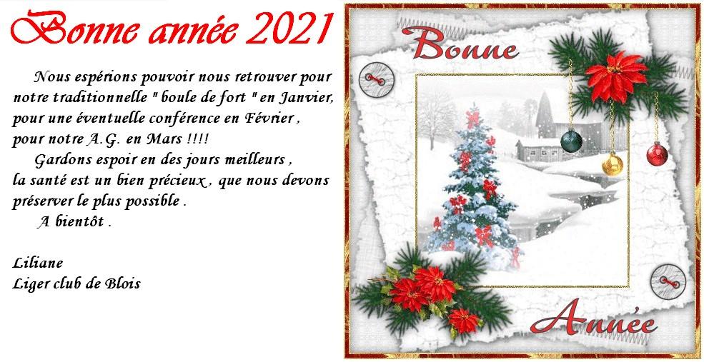 Liliane webmaster du Liger-Club de Blois