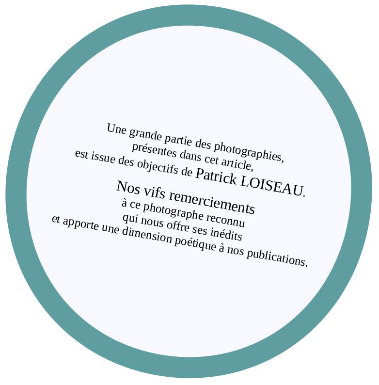 Loiseau_objectifs
