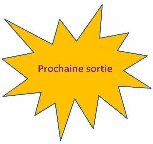 ob_6c941e_prochaine-sortie