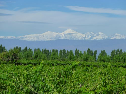Le cerro Aconcagua