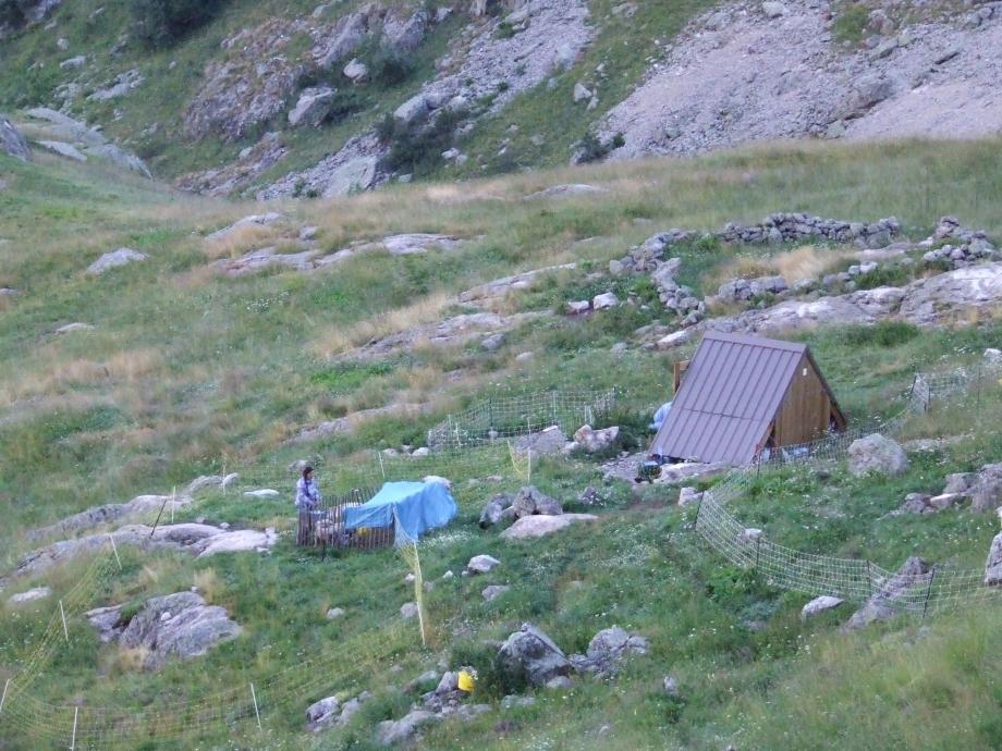 Cabane du Seylas - Montée de Buchardet -  Haute route du Vieux Chaillol - 26.07.07 - 1.JPG