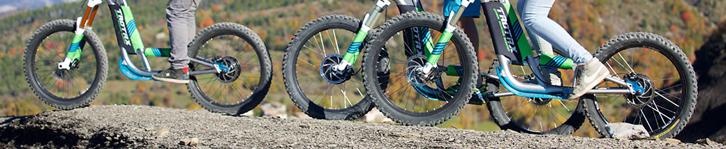 Estérel   Mountain     Bike    Electric