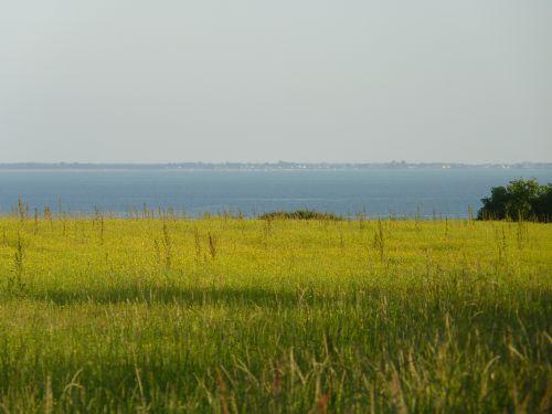 Paysage prairie fin mai