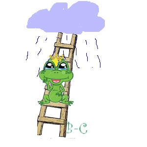 pluie et grenouille.jpg