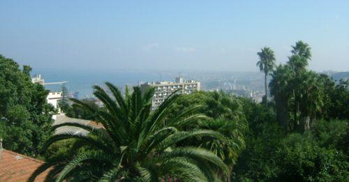 Panorama d'Alger