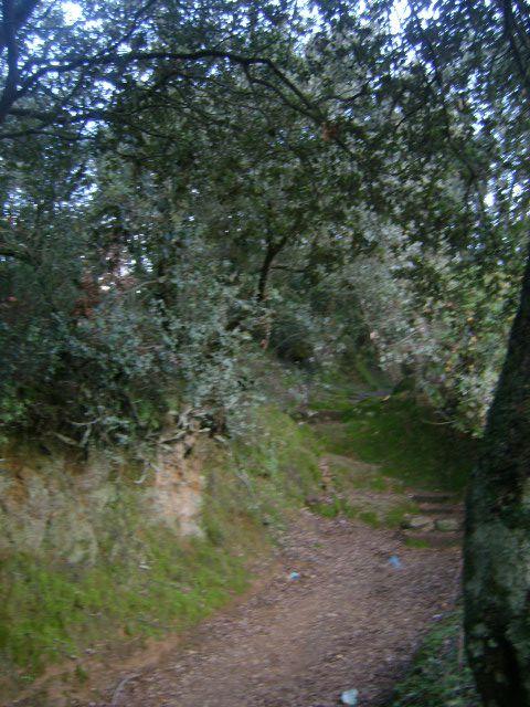 Vieux chemin de montagne