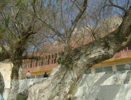 Centre de thalassothérapie de Sidi Fredj  vu côté mer. Photo prise le 17-03-2012.
