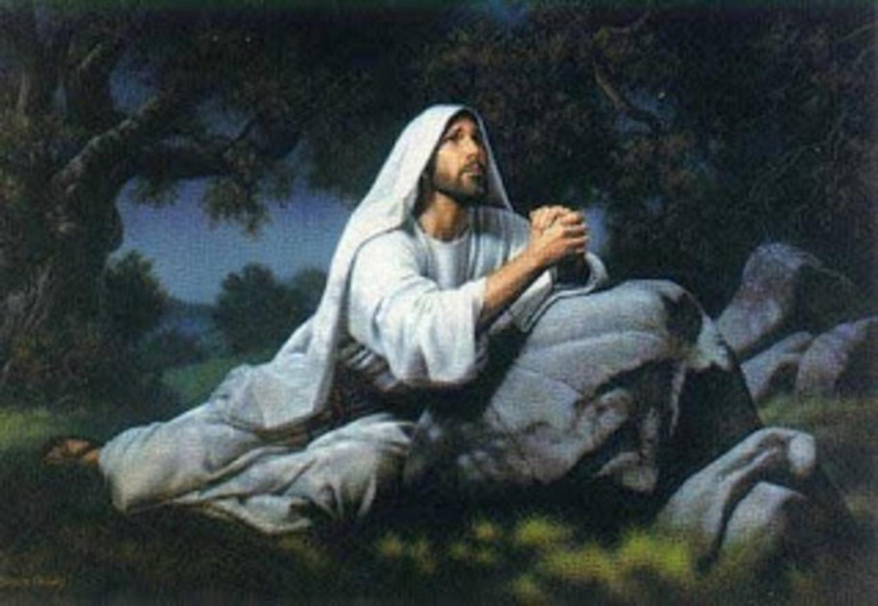 Septième dimanche de Pâques 2016 19.jpg