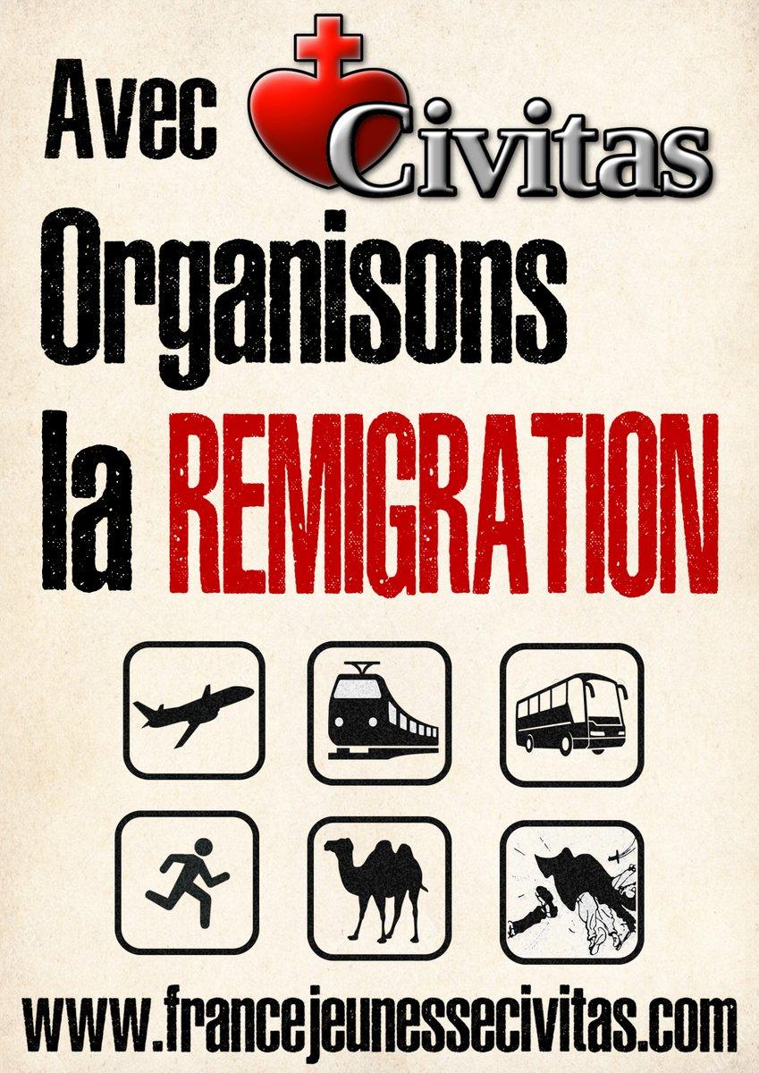 remigration.jpg