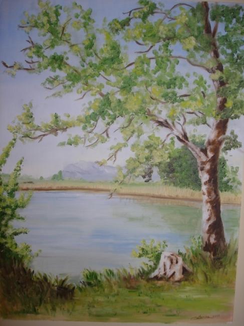 Le lac Saint André