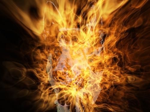 feu gibbs.jpg