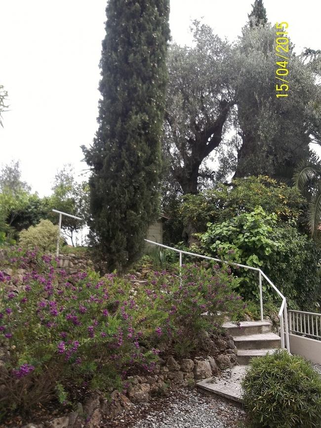 grande residence 4.jpg