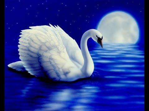Richard Donald Moon Swan.jpg