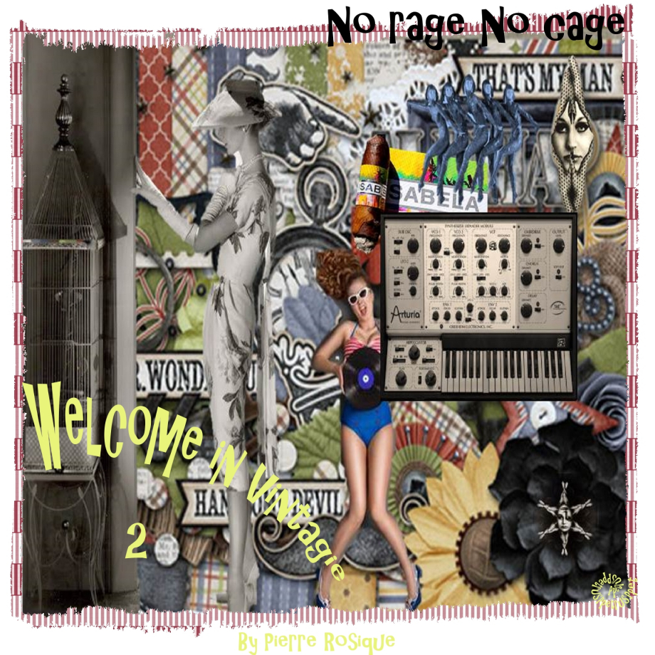 2-Welcome in Vintagie-No rage No Cage.jpg