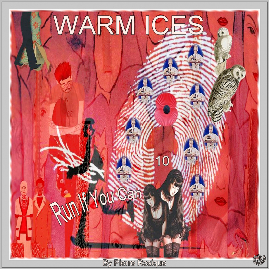 10 Warm Ices - Run If You Can.jpg