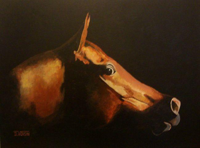 Portrait cheval inquiet