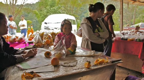 Le marché au pieds du village
