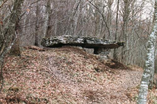 dolmen-ternant.jpg