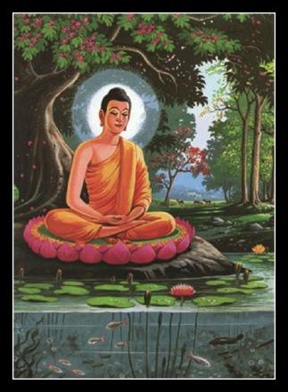 Lotus_Bouddha.jpg