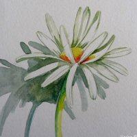 icone blog aquarelle fleurs (6).JPG