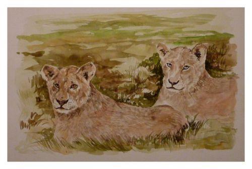 Lionnes   -    (Aquarelle - format 24 x 32)