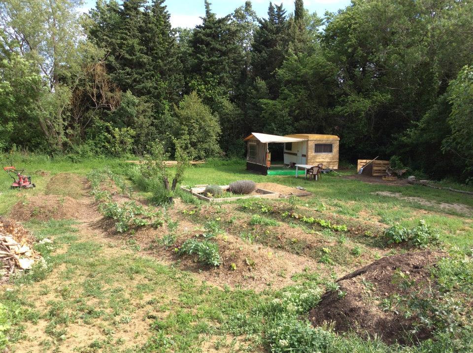 jardin18.jpg