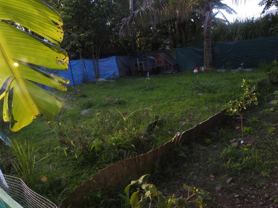 jardin3 lall.JPG