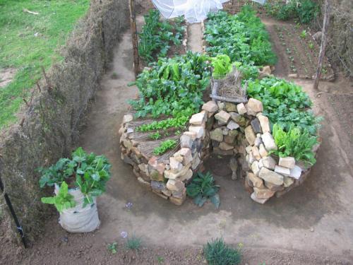 jardin54.png