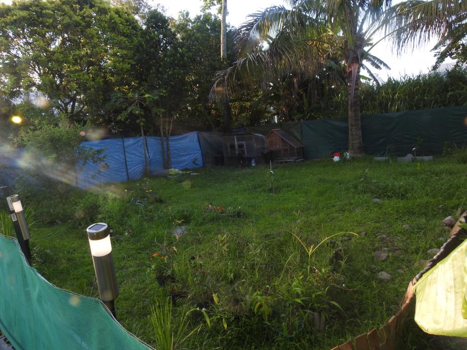 jardin4 lall.JPG