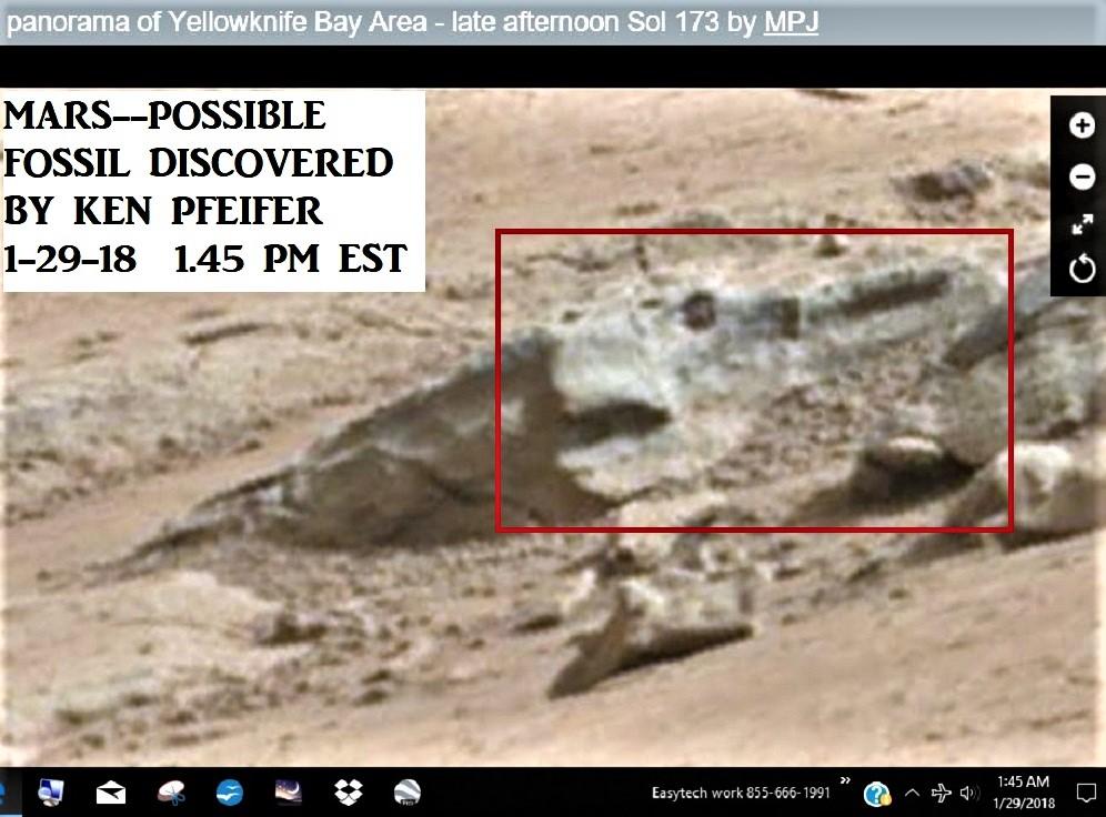 MARS45.jpg
