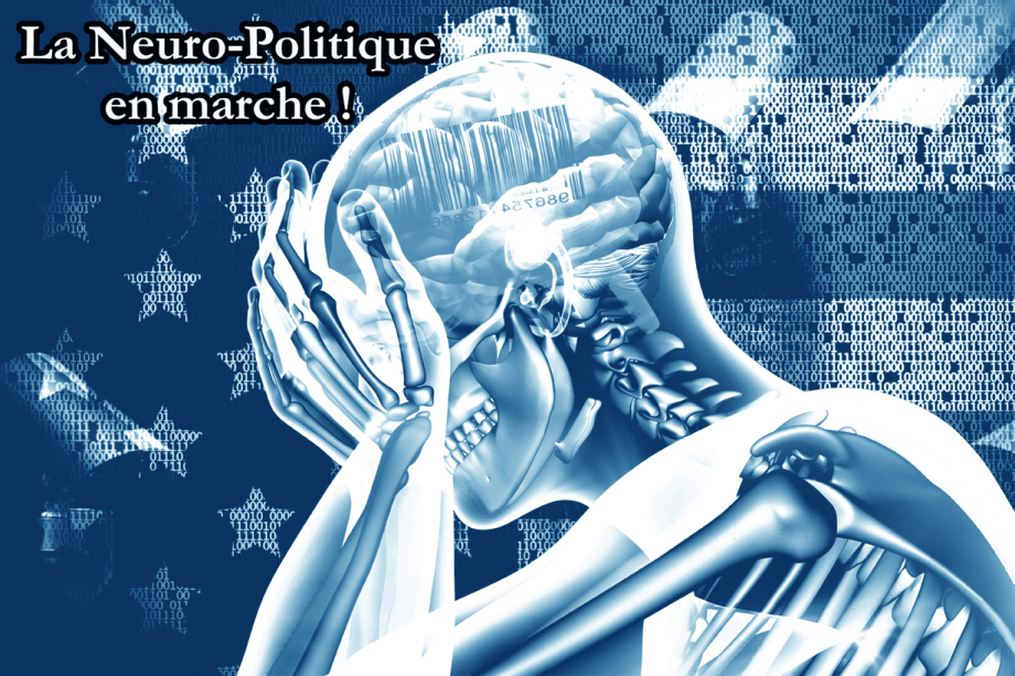 Neuro-politique.jpg