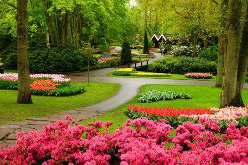 Dans le parc floral de Keukenhof au Pays-Bas