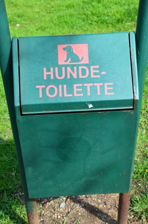 Toilette pour chiens