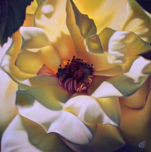 Rose éclose citronnée.jpg