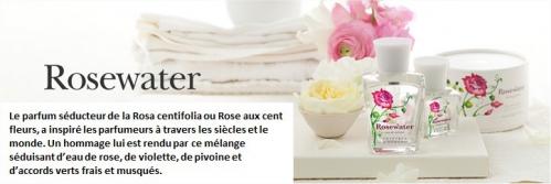 Rosewater1.jpg