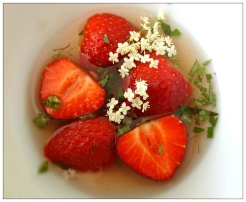 Copie de fraises sureau 3.jpg