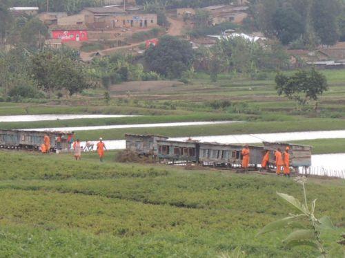 Détenus, Murambi