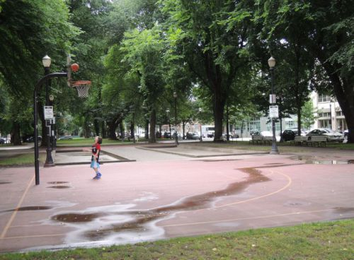 basket  Portland