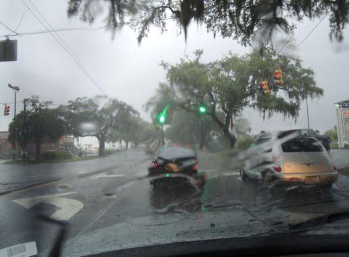 Savannah sous l'orage