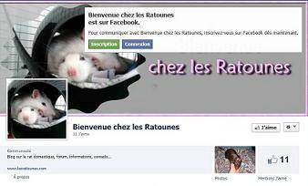 page facebook2.jpg