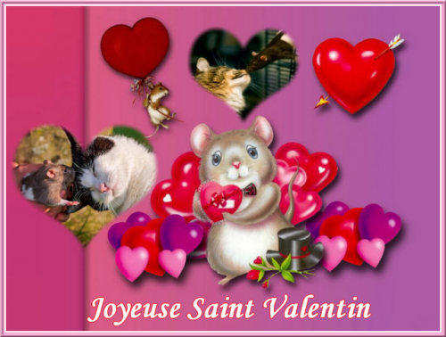 st valentin 2bis.png