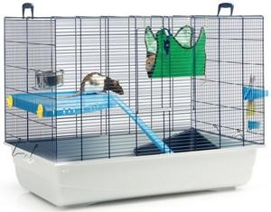 41058-cage-rat-et-furet-freddy-2.jpg