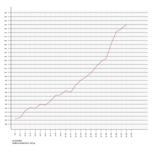 courbe de poids bis.jpg